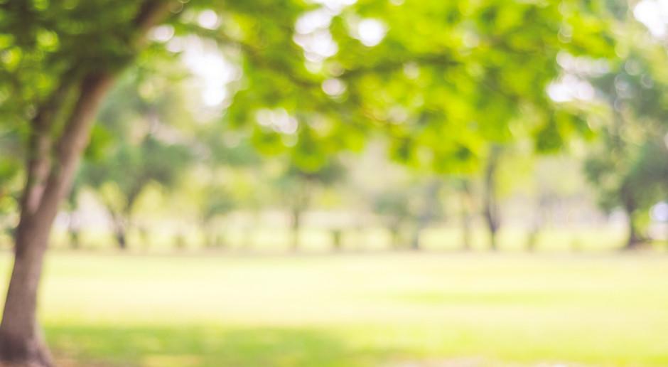 Mazowieckie ogrody działkowe z milionowym dofinansowaniem