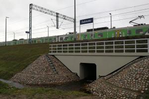 Na trasach kolejowych powstało ponad 100 przejść dla zwierząt
