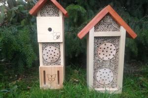 Miasto dba o ptaki, jeże i owady. W Opolu pojawią się dla nich nowe domki