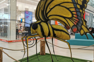 W Galerii Północnej pojawiły się wielkoformatowe figury owadów