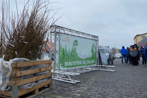 Białystok jeszcze bardziej zielony. Miasto rozdało 1000 różnych drzewek
