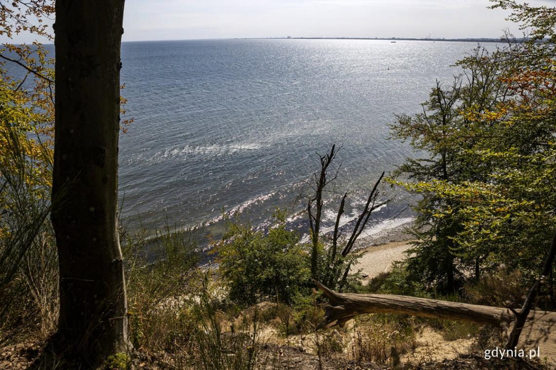 Gdynia chce walczyć o ochronę morza