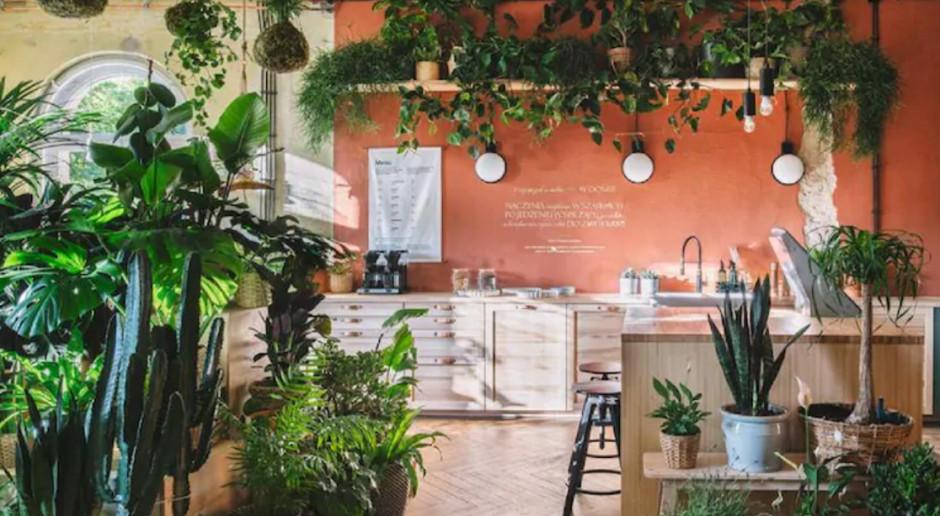 IKEA Dom Jutra w Szczecinie przejdzie reinkarnację
