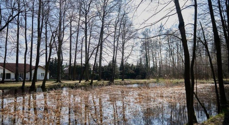 Miało być osiedle, będą leśne parki. Łódź wycofuje ze sprzedaży tereny inwestycyjne na rzecz przyrody