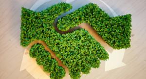 Łódź rusza z warsztatami ekologicznymi