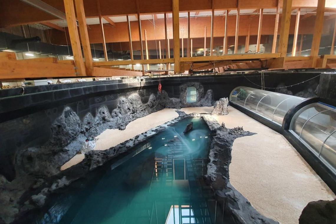Basen w łódzkim Orientarium wypełnia się wodą. Pływać w nim będą rekiny