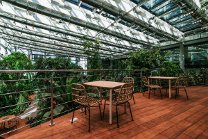 Dżungla w sercu biurowca. Olivia Business Centre otwiera całoroczny ogród