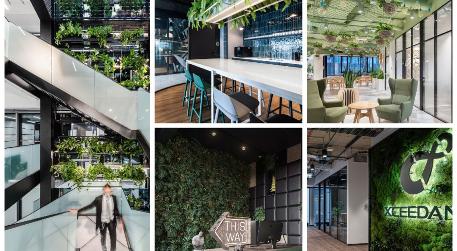 Zieleń w biurze: 10 projektów w duchu biophilic design