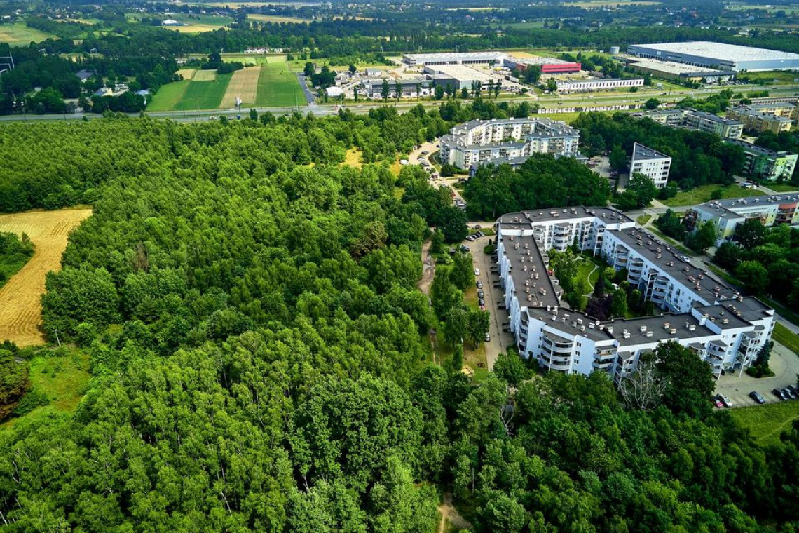 Zielona Łódź. Nowy park powstanie na Janowie