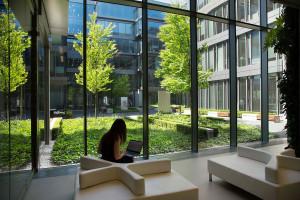Zielone środowisko pracy według Golden Star Group