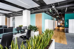 Nowoczesność i technologia w najnowszym projekcie pracowni Studio Quadra. Oto biuro Allianz Partners