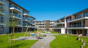 Drewniane żłobki i przedszkola - czy mają w Polsce przyszłość?