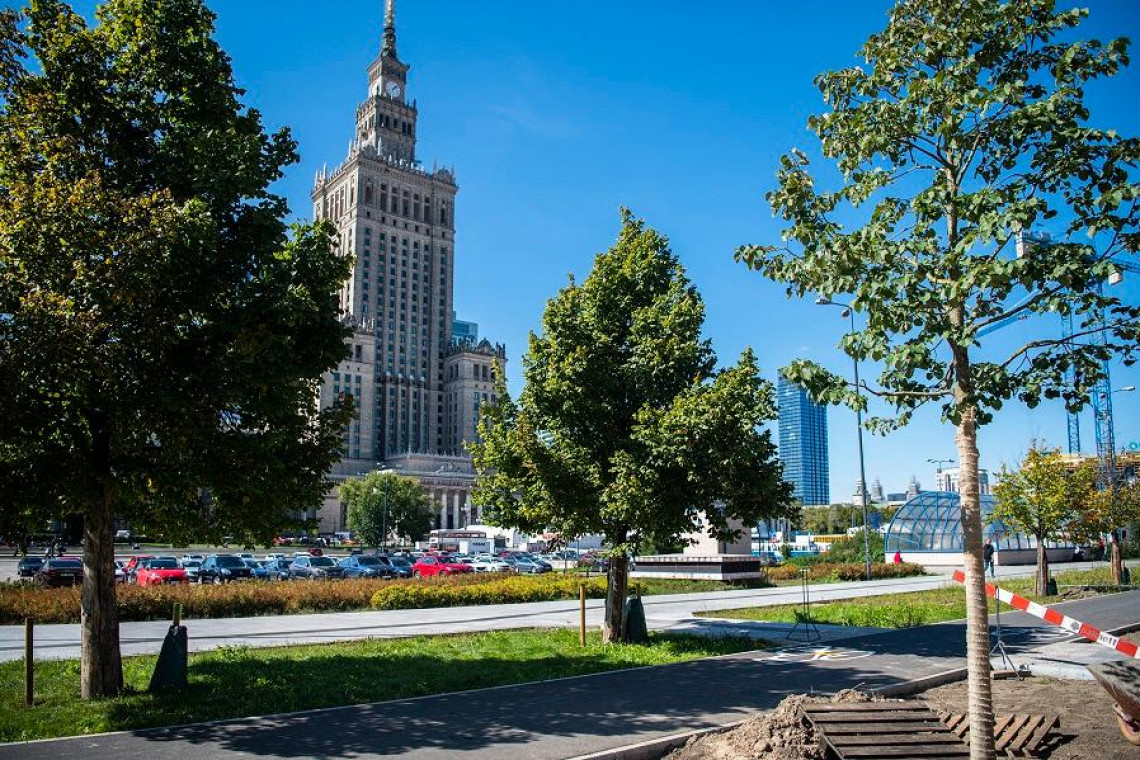 Coraz bardziej zielona Warszawa. W planach kolejne inwestycje w ścisłym centrum