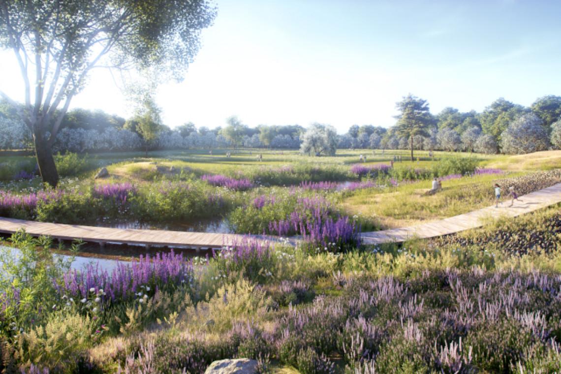 Tak będzie wyglądał Park Mokotowski: naturalny ogród biocenotyczny i mniej betonu