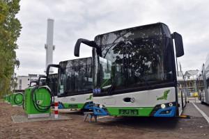 Pierwsze elektrobusy w Szczecinie