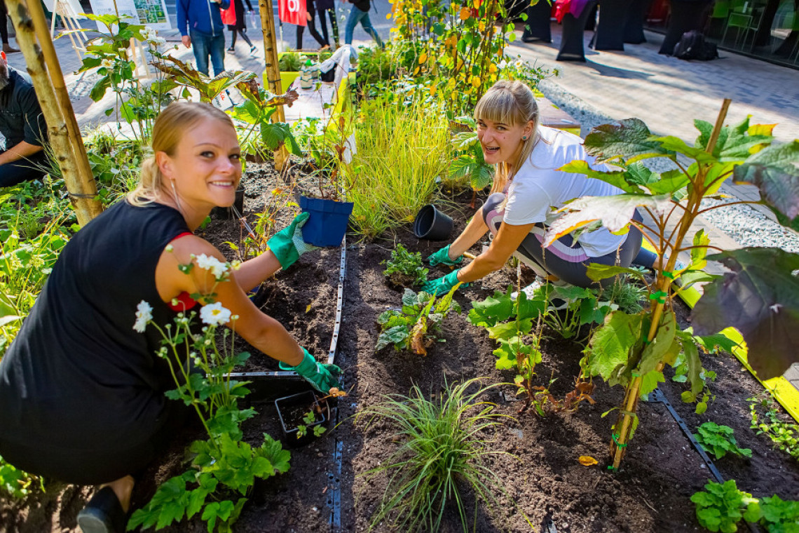 Biurowiec Green Horizone z pierwszą w Polsce instalacją nowego systemu ogrodnictwa modułowego