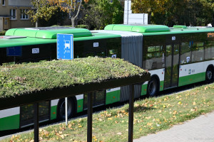 Kolejne zielone przystanki w Białymstoku
