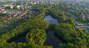 Tychy pracują nad udoskonaleniem zieleni miejskiej
